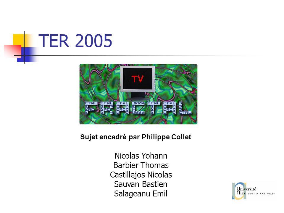 TER 2005 Sujet encadré par Philippe Collet Nicolas Yohann Barbier Thomas Castillejos Nicolas Sauvan Bastien Salageanu Emil