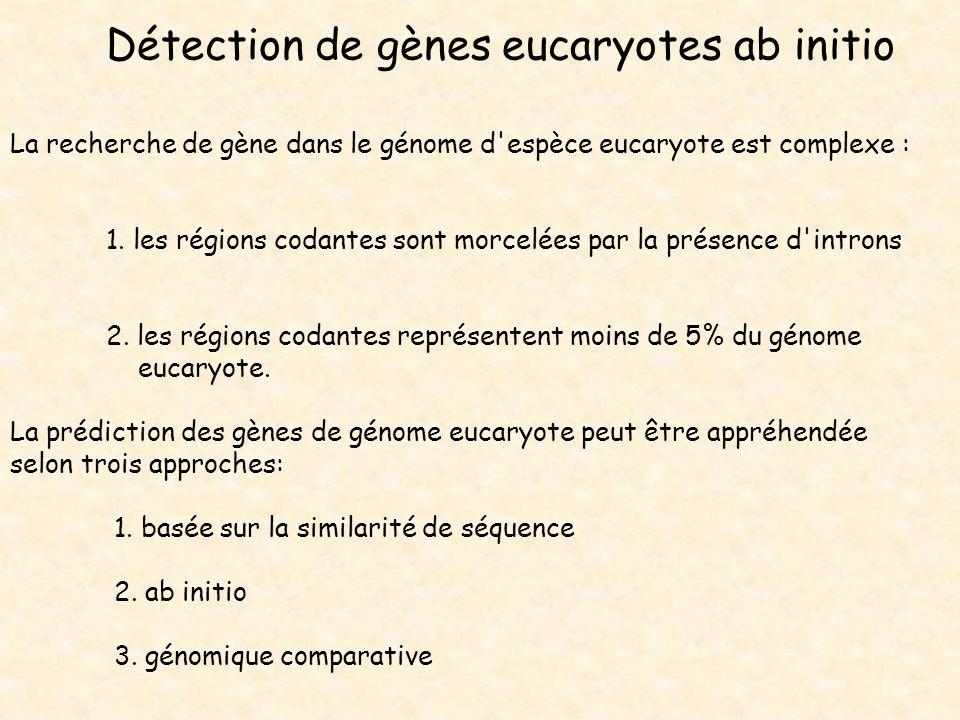 Détection de gènes eucaryotes ab initio La recherche de gène dans le génome d'espèce eucaryote est complexe : 1. les régions codantes sont morcelées p