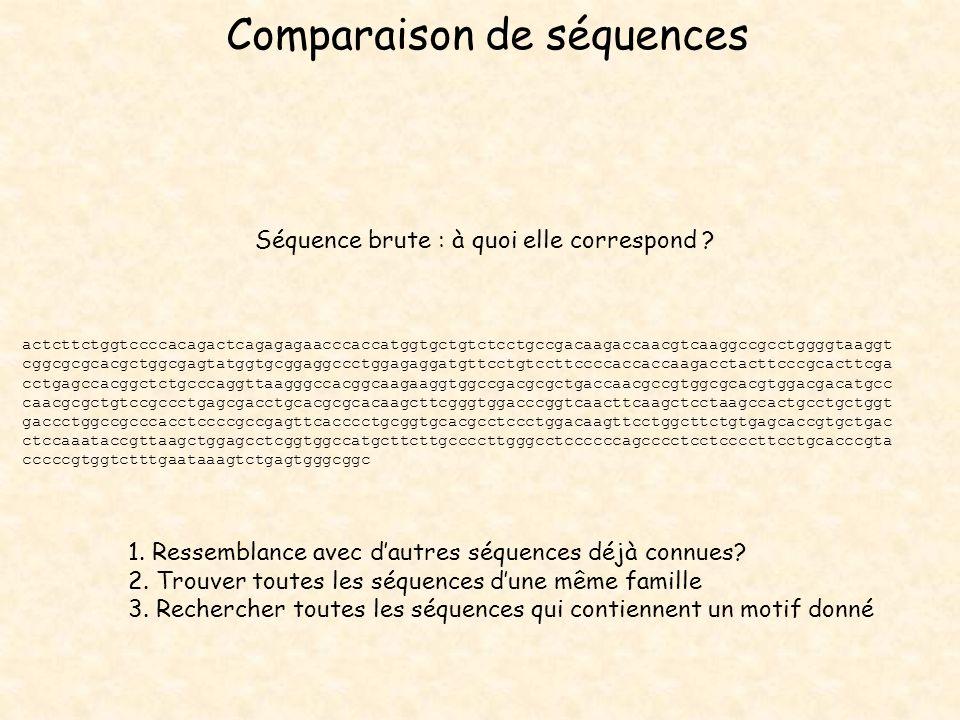 Comparaison de séquences actcttctggtccccacagactcagagagaacccaccatggtgctgtctcctgccgacaagaccaacgtcaaggccgcctggggtaaggt cggcgcgcacgctggcgagtatggtgcggaggcc