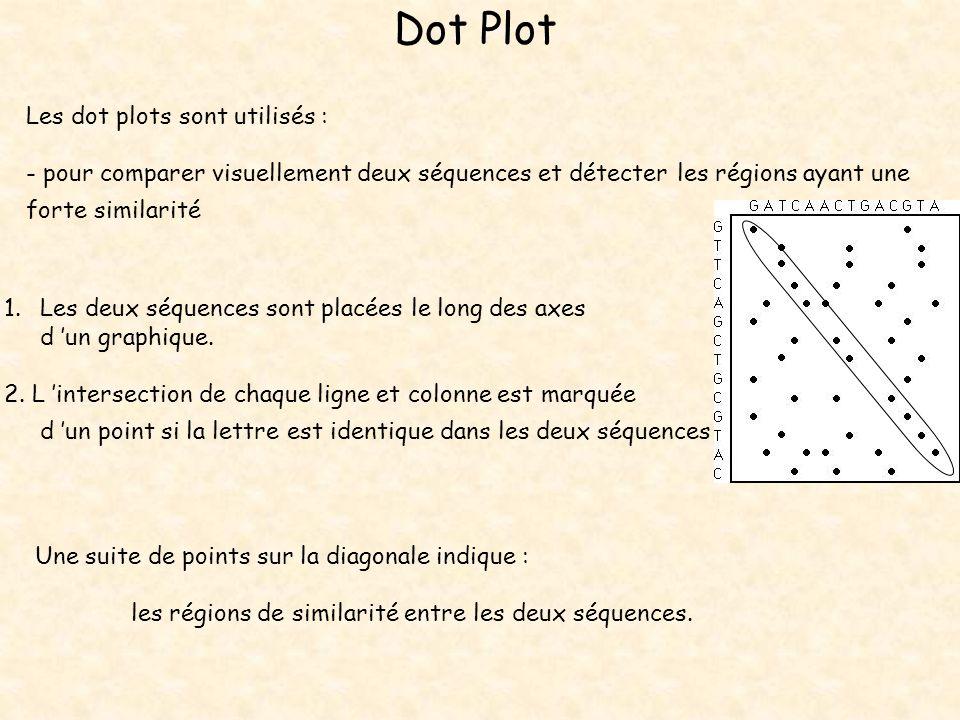 Dot Plot Les dot plots sont utilisés : - pour comparer visuellement deux séquences et détecter les régions ayant une forte similarité 1.Les deux séque