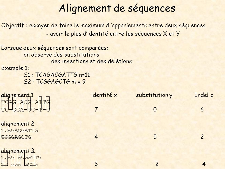 Alignement de séquences Objectif : essayer de faire le maximum d appariements entre deux séquences - avoir le plus didentité entre les séquences X et