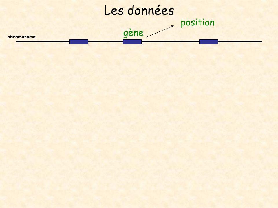 Les données chromosome gène position