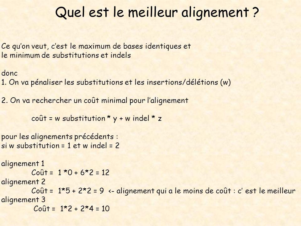 Quel est le meilleur alignement ? Ce quon veut, cest le maximum de bases identiques et le minimum de substitutions et indels donc 1. On va pénaliser l