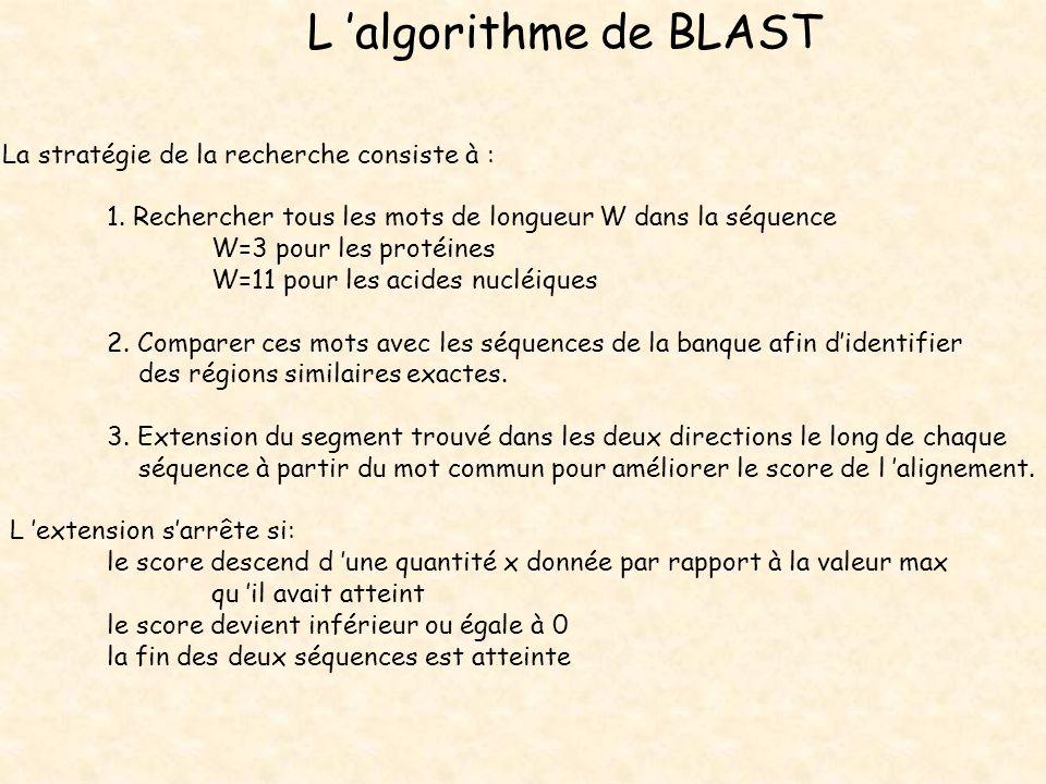 L algorithme de BLAST La stratégie de la recherche consiste à : 1. Rechercher tous les mots de longueur W dans la séquence W=3 pour les protéines W=11