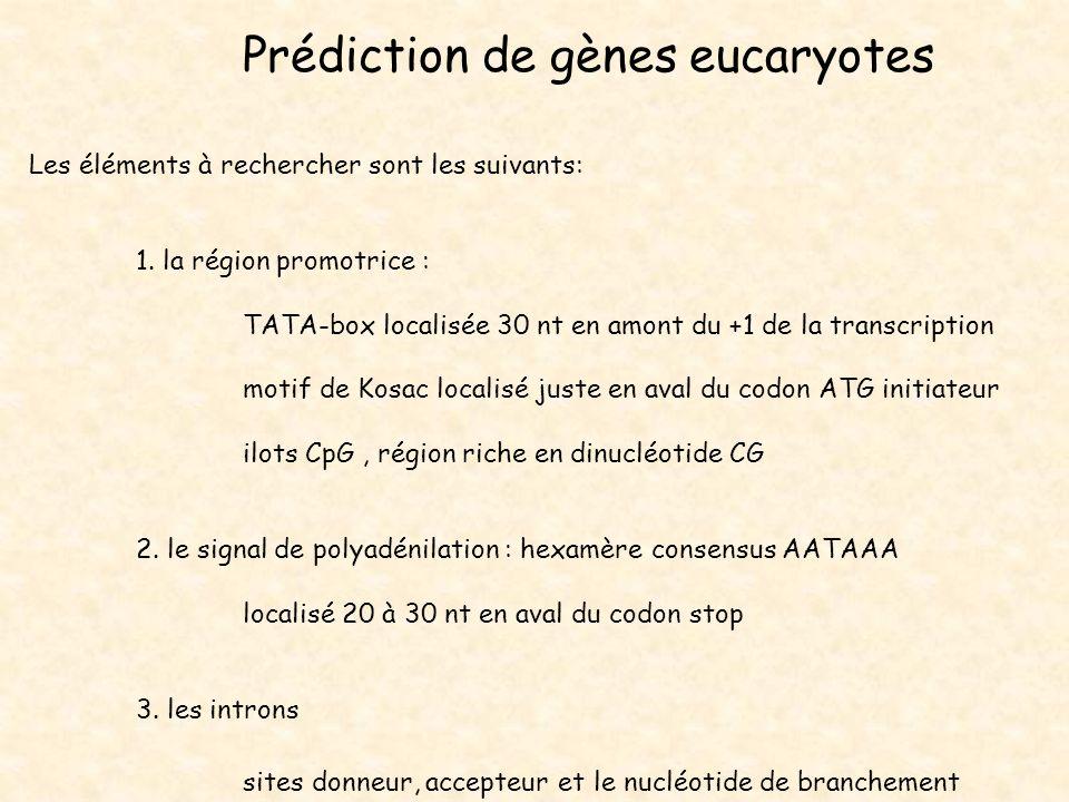 Prédiction de gènes eucaryotes Les éléments à rechercher sont les suivants: 1. la région promotrice : TATA-box localisée 30 nt en amont du +1 de la tr