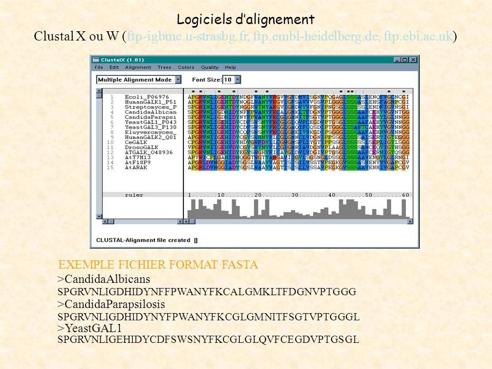 Logiciels dalignement Clustal X ou W (ftp-igbmc.u-strasbg.fr, ftp.embl-heidelberg.de, ftp.ebi.ac.uk) EXEMPLE FICHIER FORMAT FASTA >CandidaAlbicans SPG