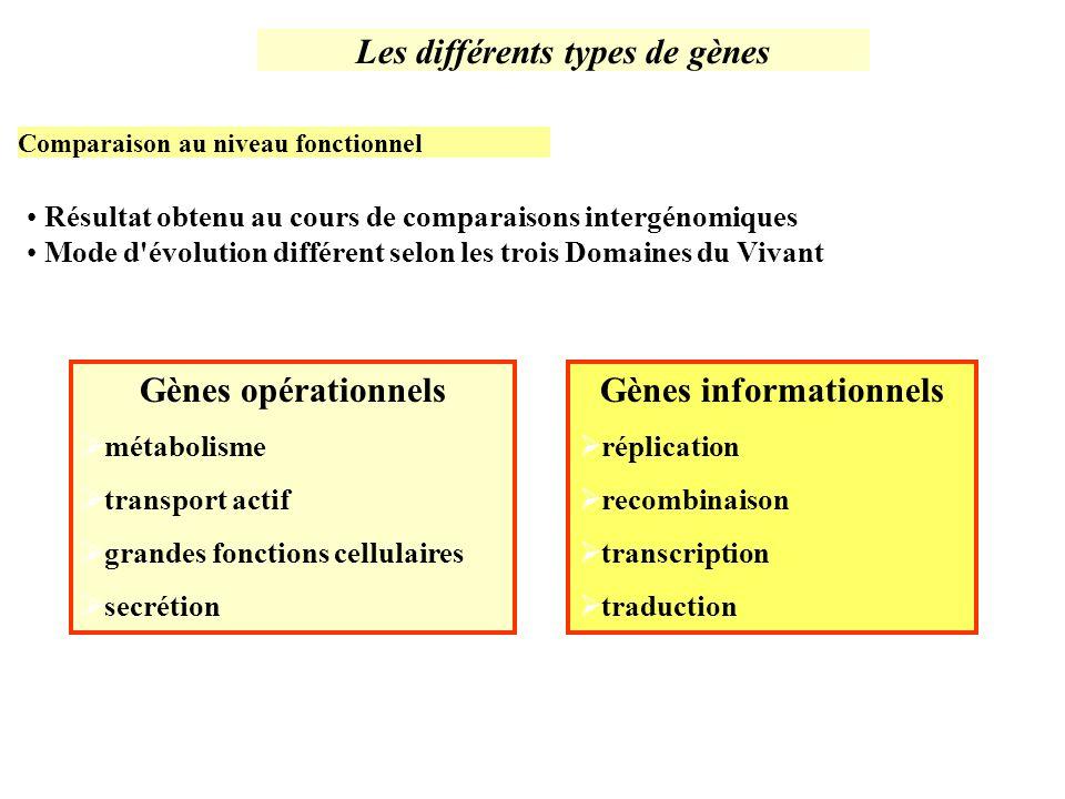 Résultat obtenu au cours de comparaisons intergénomiques Mode d'évolution différent selon les trois Domaines du Vivant Les différents types de gènes C