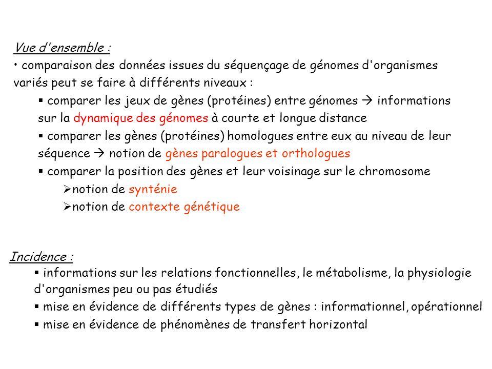 1.Les différents types de gènes a.au niveau homologie b.au niveau fonctionnel 2.