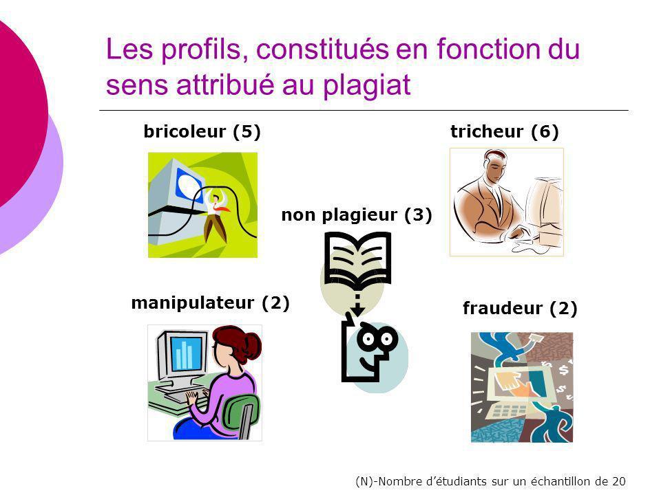 Les profils, constitués en fonction du sens attribué au plagiat bricoleur (5) non plagieur (3) manipulateur (2) fraudeur (2) tricheur (6) (N)-Nombre d