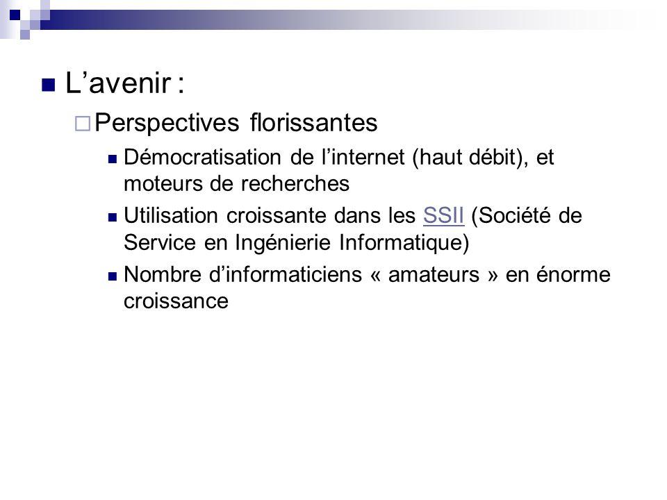Lavenir : Perspectives florissantes Démocratisation de linternet (haut débit), et moteurs de recherches Utilisation croissante dans les SSII (Société