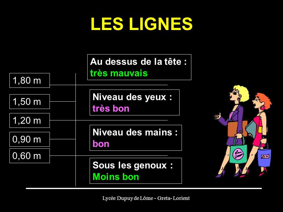 Lycée Dupuy de Lôme - Greta- Lorient LES LIGNES Sous les genoux : Moins bon Niveau des mains : bon Niveau des yeux : très bon Au dessus de la tête : t
