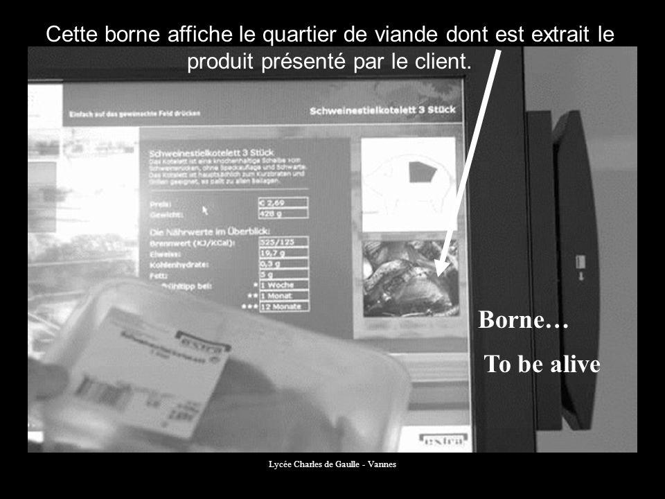 Lycée Charles de Gaulle - Vannes Cette borne affiche le quartier de viande dont est extrait le produit présenté par le client. Borne… To be alive