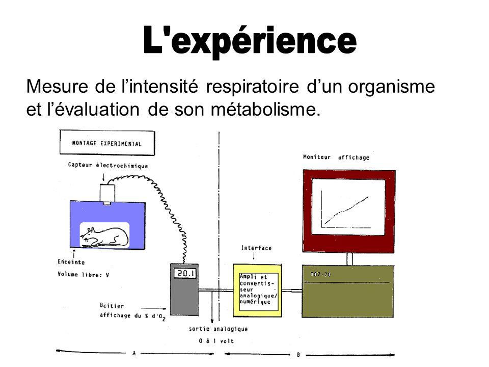 Mesure de lintensité respiratoire dun organisme et lévaluation de son métabolisme.
