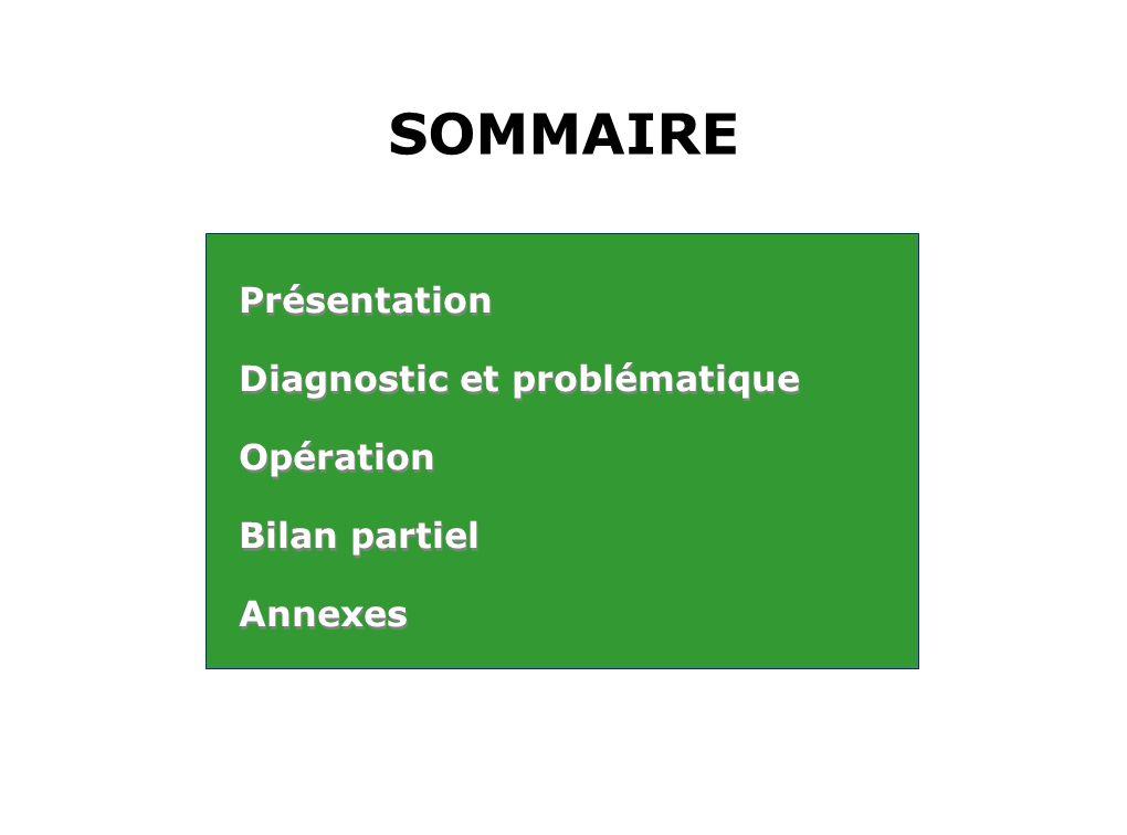 SOMMAIRE Présentation Diagnostic et problématique Opération Bilan partiel Annexes Présentation Diagnostic et problématique Opération Bilan partiel Ann