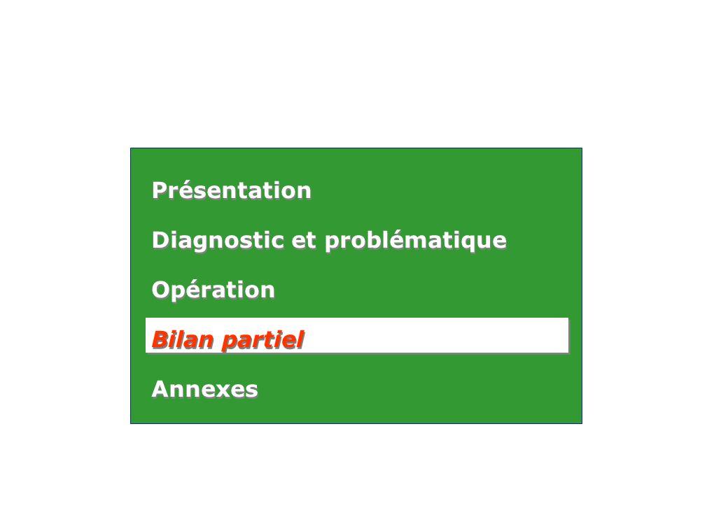 Présentation Diagnostic et problématique Opération Bilan partiel Annexes Présentation Diagnostic et problématique Opération Bilan partiel Annexes