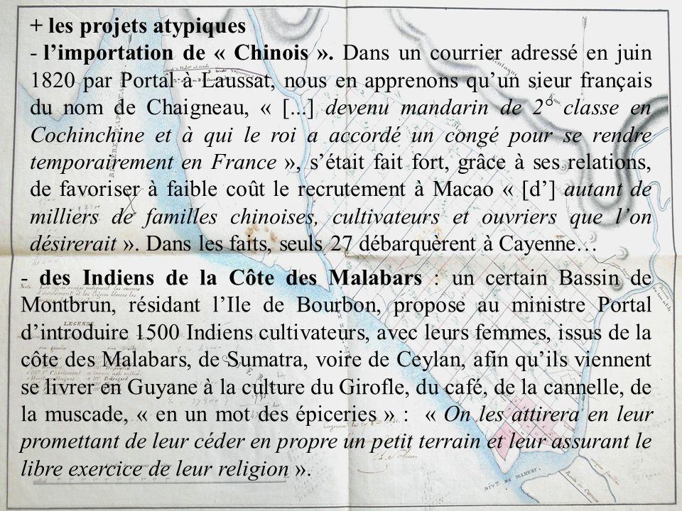 + les projets atypiques - limportation de « Chinois ». Dans un courrier adressé en juin 1820 par Portal à Laussat, nous en apprenons quun sieur frança
