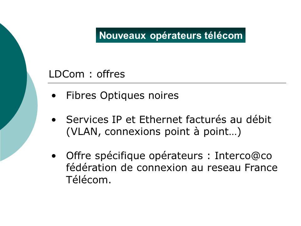 Nouveaux opérateurs télécom LDCom : offres Fibres Optiques noires Services IP et Ethernet facturés au débit (VLAN, connexions point à point…) Offre sp