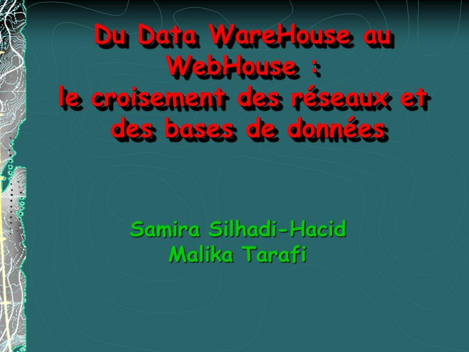 Du Data WareHouse au WebHouse : le croisement des réseaux et des bases de données Du Data WareHouse au WebHouse : le croisement des réseaux et des bas