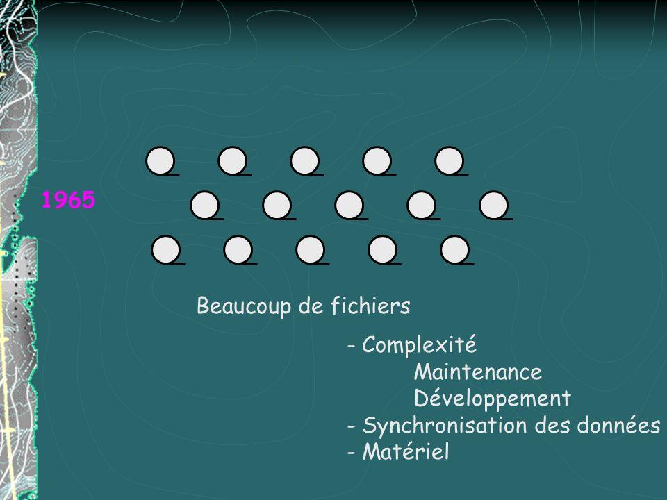 1965 - Complexité Maintenance Développement - Synchronisation des données - Matériel Beaucoup de fichiers