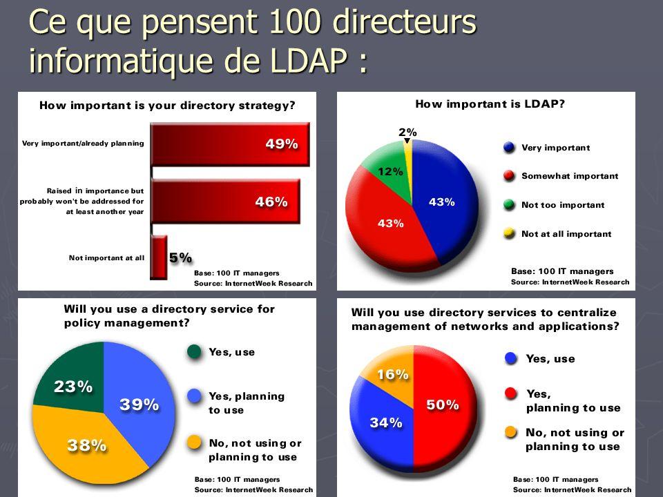 Ce que pensent 100 directeurs informatique de LDAP :