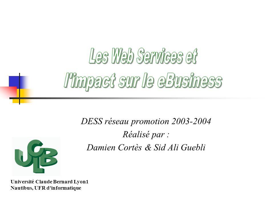 DESS réseau promotion 2003-2004 Réalisé par : Damien Cortès & Sid Ali Guebli Université Claude Bernard Lyon1 Nautibus, UFR d'informatique