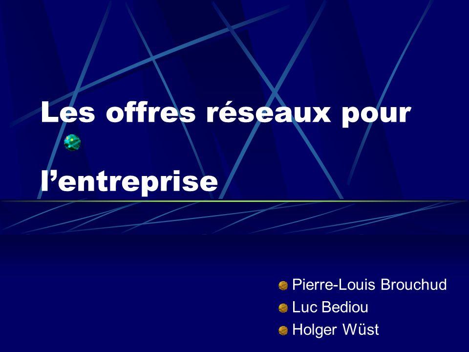 Les offres réseaux pour lentreprise Pierre-Louis Brouchud Luc Bediou Holger Wüst