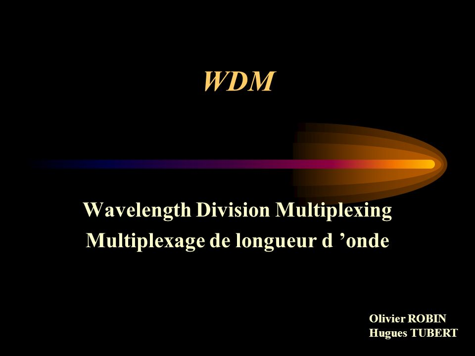 WDM Rappels sur les fibres optiques Techniques de transmission optique Les différents types de réseaux optique La commutation optique Perspectives