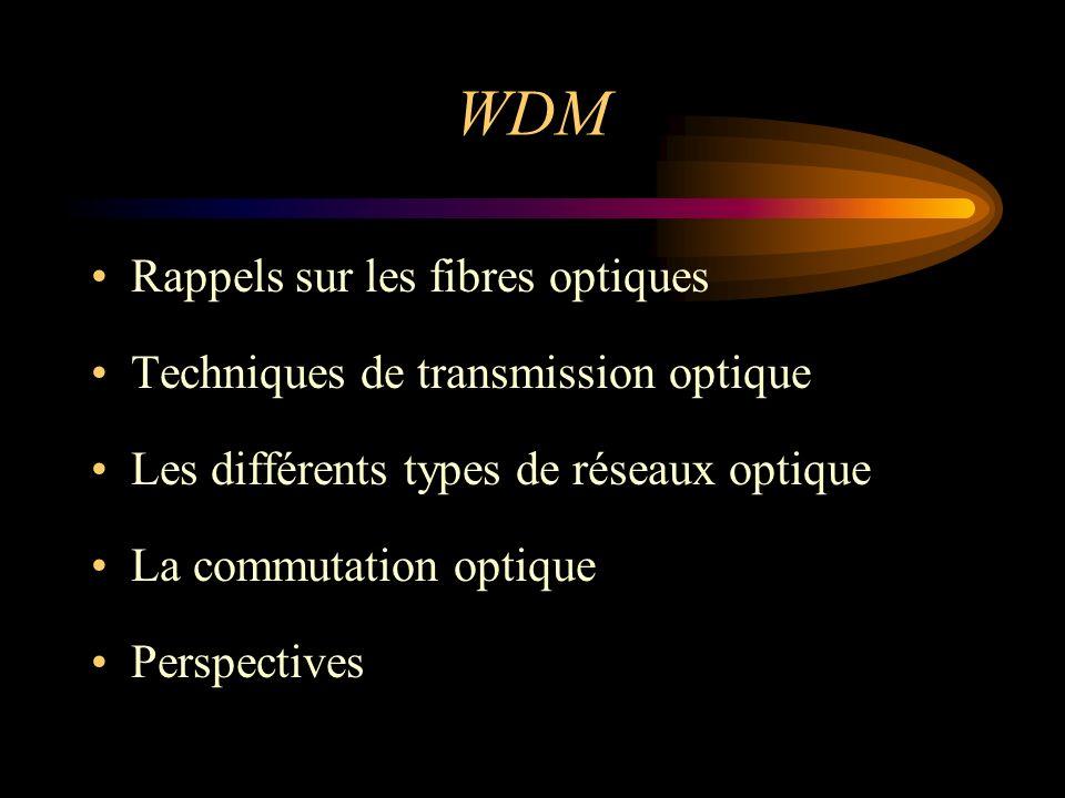 Format du paquet optique Résolution de la contention –la déflexion –les mémoires optiques projet KEOPS WRS & BSS Les commutateurs optiques Données entête Temps de garde 100Mbs -1 700Mbs -1