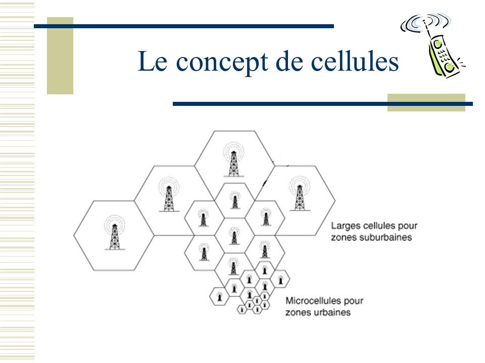 Le concept de cellules