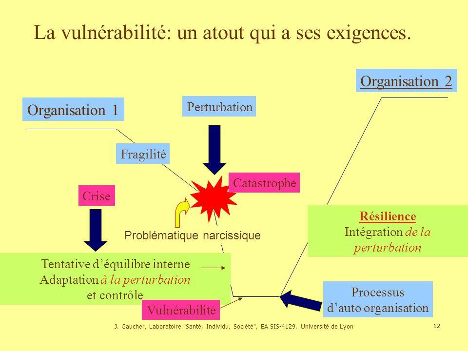 J.Gaucher, Laboratoire Santé, Individu, Société , EA SIS-4129.