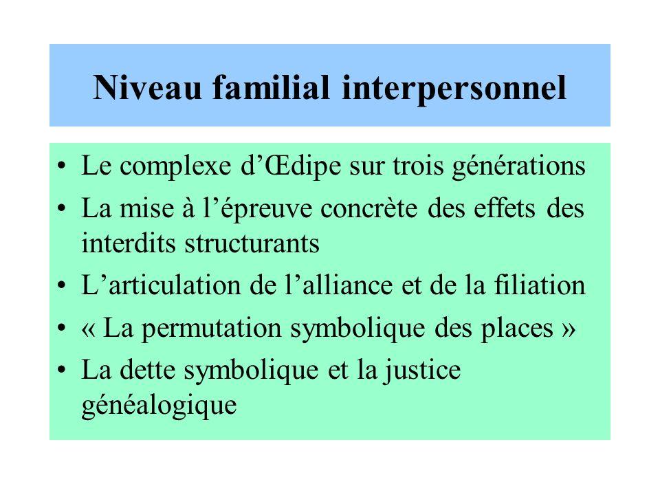 Niveau familial interpersonnel Le complexe dŒdipe sur trois générations La mise à lépreuve concrète des effets des interdits structurants Larticulatio