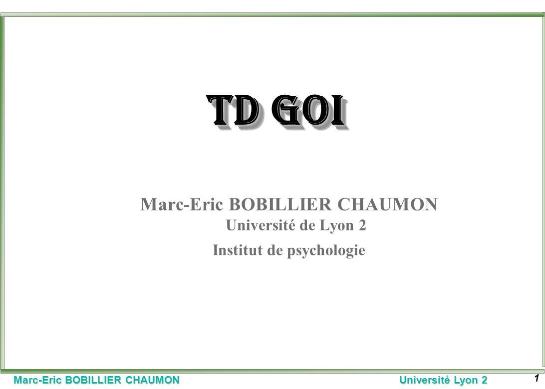 Marc-Eric BOBILLIER CHAUMON Université Lyon 2 1 TD GOI Marc-Eric BOBILLIER CHAUMON Université de Lyon 2 Institut de psychologie