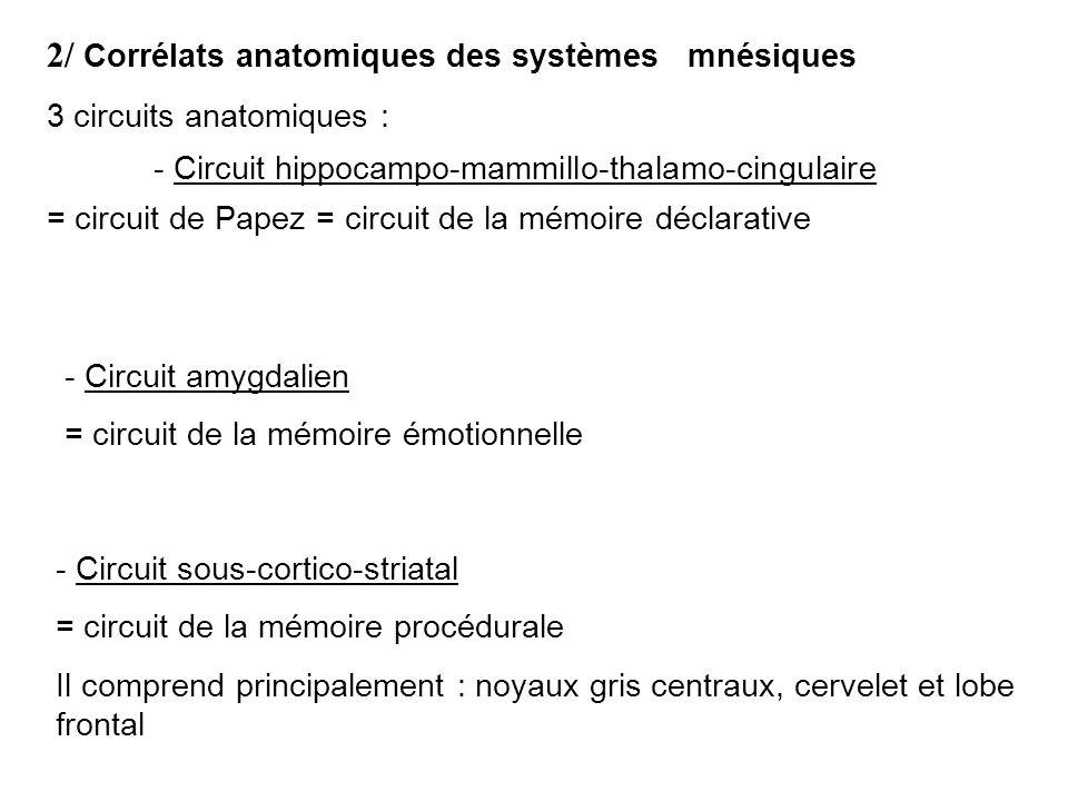 2/ Corrélats anatomiques des systèmes mnésiques 3 circuits anatomiques : - Circuit hippocampo-mammillo-thalamo-cingulaire = circuit de Papez = circuit