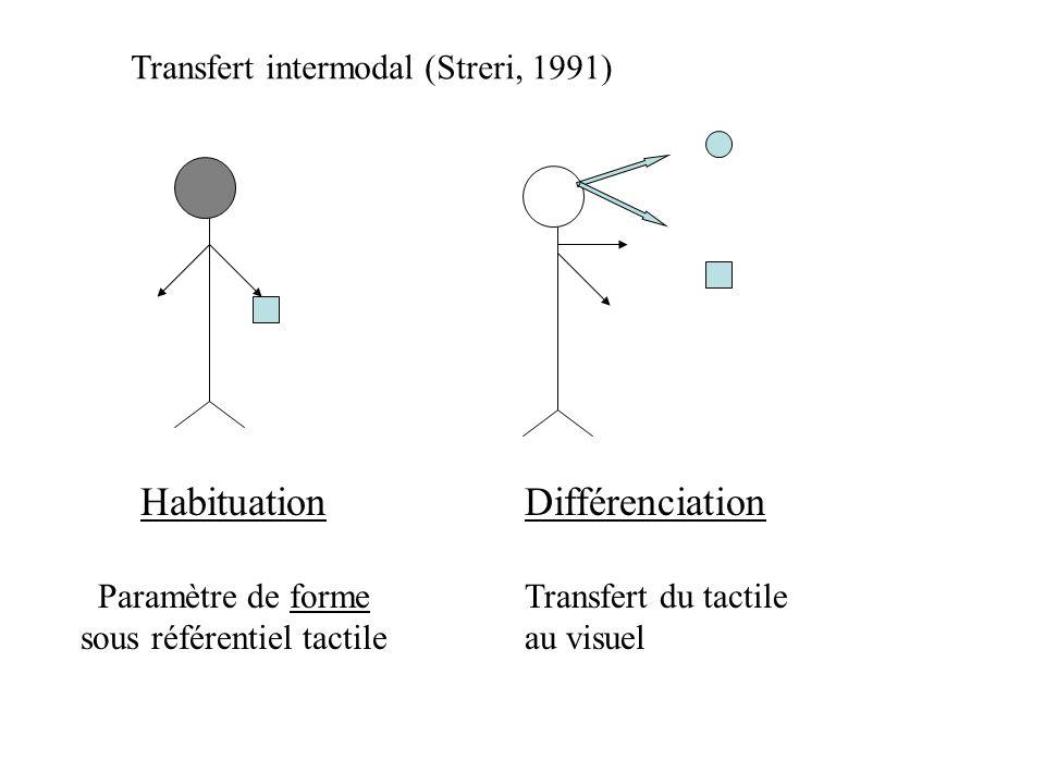 Le nombre - absence de correspondance, terme à terme (4-5 ans) - conservation terme à terme sans conservation = pensée intuitive préopératoire (5-6 an