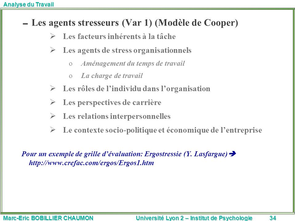 Marc-Eric BOBILLIER CHAUMON Université Lyon 2 – Institut de Psychologie34 Analyse du Travail Les agents stresseurs (Var 1) (Modèle de Cooper) Les fact