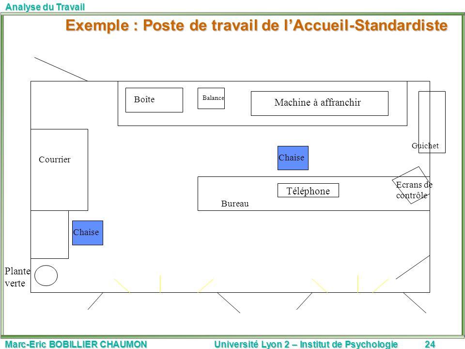 Marc-Eric BOBILLIER CHAUMON Université Lyon 2 – Institut de Psychologie24 Analyse du Travail Exemple : Poste de travail de lAccueil-Standardiste Exemp