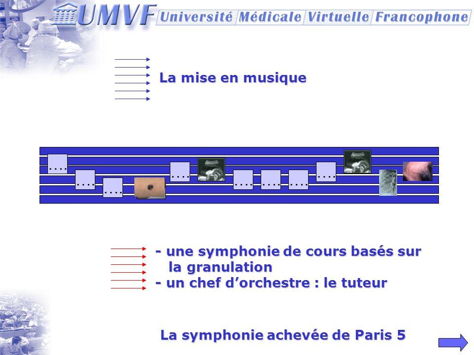 Les notes Images Video Mises en musique… Biblio. Textes Qcm Ccqcm Cas clinique Autres sites Objectifs Forum Faq Auteurs TP/TD virtuel