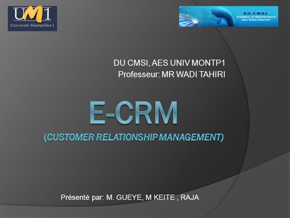 DU CMSI, AES UNIV MONTP1 Professeur: MR WADI TAHIRI Présenté par: M. GUEYE, M KEITE, RAJA