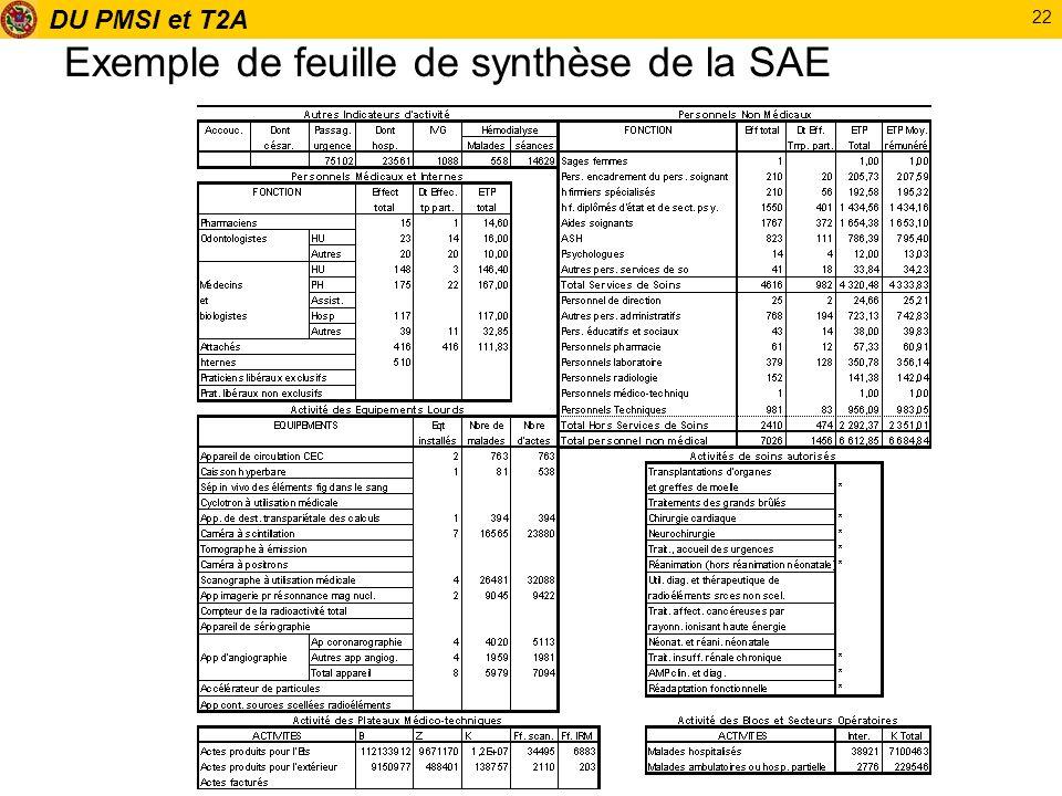 DU PMSI et T2A 22 Exemple de feuille de synthèse de la SAE