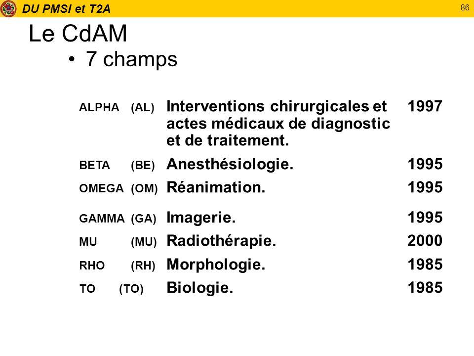 DU PMSI et T2A 86 Le CdAM 7 champs ALPHA (AL) Interventions chirurgicales et 1997 actes médicaux de diagnostic et de traitement. BETA (BE) Anesthésiol