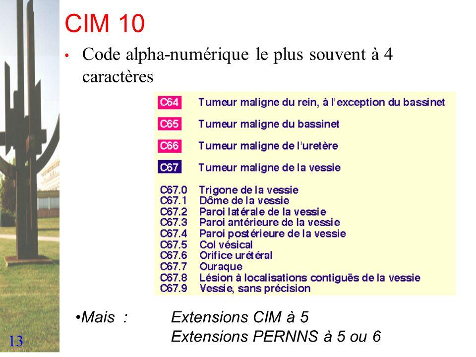 13 CIM 10 Code alpha-numérique le plus souvent à 4 caractères Mais :Extensions CIM à 5 Extensions PERNNS à 5 ou 6