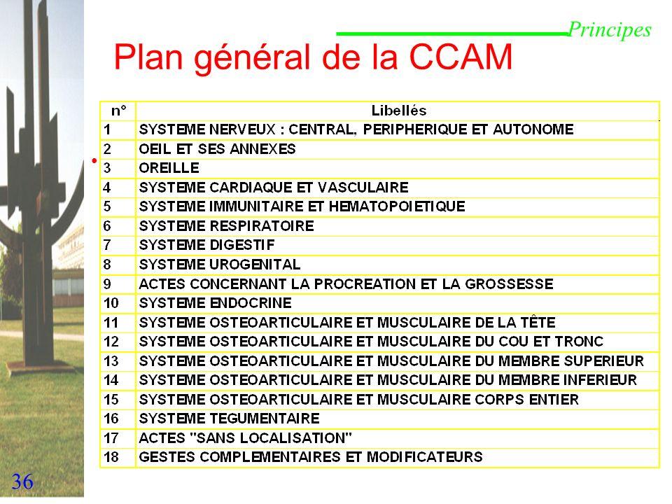 36 Plan général de la CCAM Principes