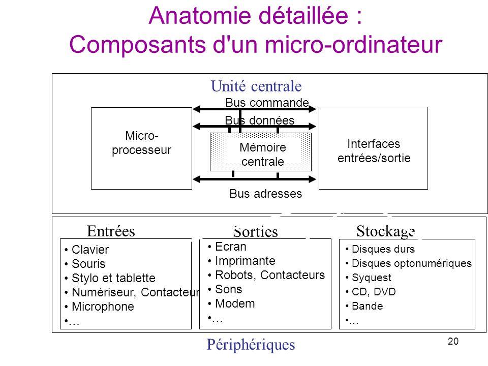 20 Anatomie détaillée : Composants d'un micro-ordinateur Principaux organes d'un micro- ordinateur Micro- processeur Interfaces entrées/sortie Bus adr