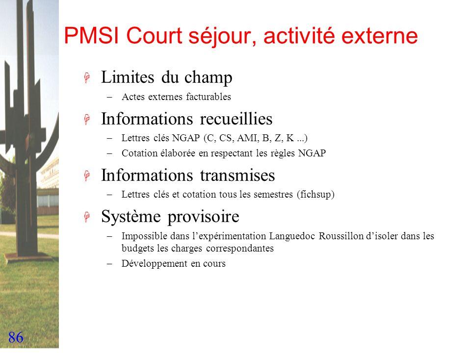 86 PMSI Court séjour, activité externe H Limites du champ –Actes externes facturables H Informations recueillies –Lettres clés NGAP (C, CS, AMI, B, Z,