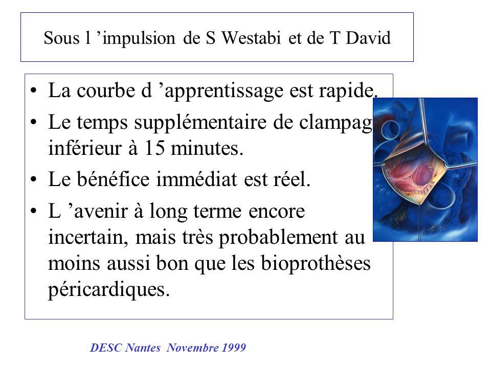 Indication Elective et courante Rétrécissement aortique > 72 ans Endocardite patient jeune avec contre indication des AVK petit anneau aortique Dilemme Après 80 ans Mauvaise fonction VG DESC Nantes Novembre 1999