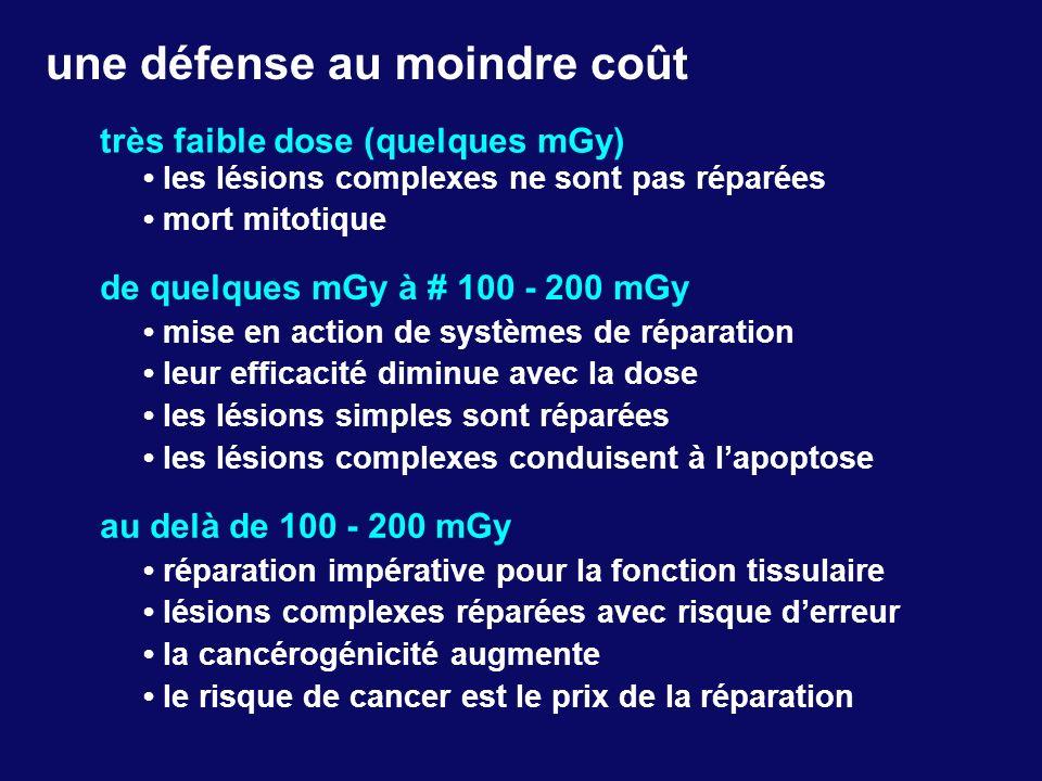 une défense au moindre coût très faible dose (quelques mGy) les lésions complexes ne sont pas réparées mort mitotique de quelques mGy à # 100 - 200 mG