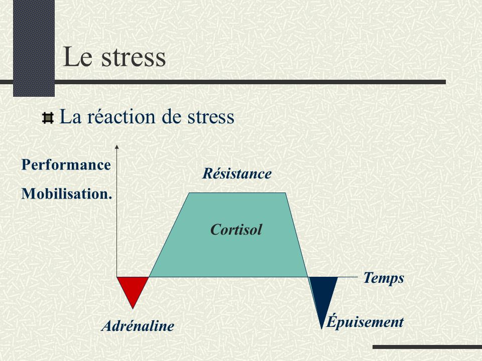 Le stress La réaction de stress Performance Mobilisation.