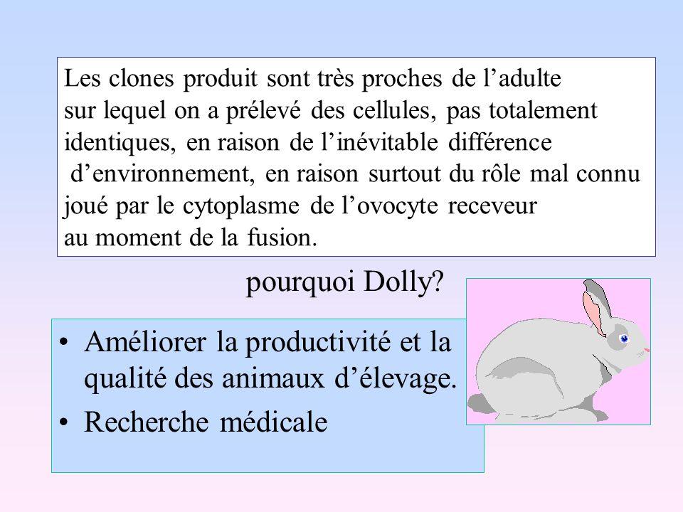 Améliorer la productivité et la qualité des animaux délevage. Recherche médicale Les clones produit sont très proches de ladulte sur lequel on a préle