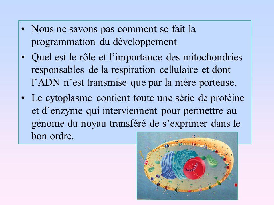 Nous ne savons pas comment se fait la programmation du développement Quel est le rôle et limportance des mitochondries responsables de la respiration