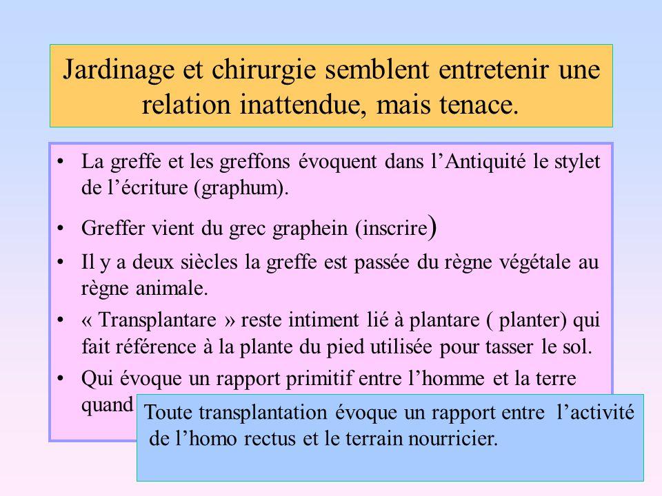 Définition et précision Allogreffe: remplacement dun organe, dun tissu par lorgane ou le tissu identique dun donneur de la même espèce.